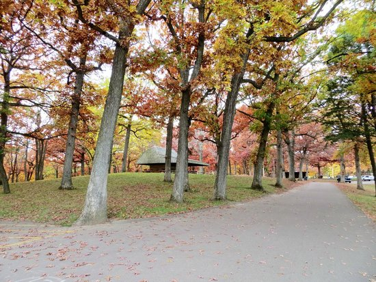 Eagle Point Park: Park Impression
