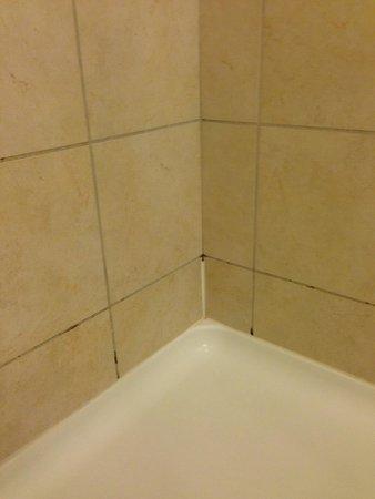 Hilton Garden Inn Rockville - Gaithersburg: Mold in Shower