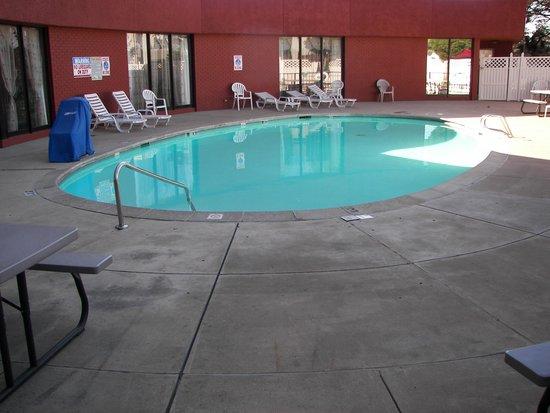 Quality Inn Central Denver: Pool