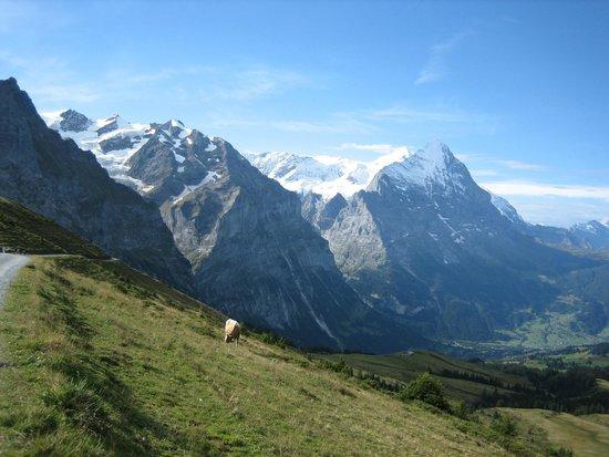 Grosse Scheidegg: Fantastic views on walk to First