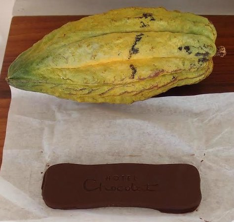 Boucan by Hotel Chocolat: Make your own Chocolate