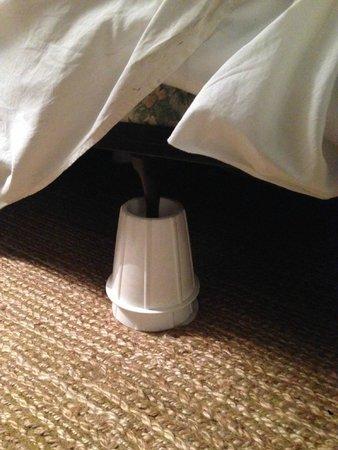 Clifton Inn : Bed on stilts.  Really?