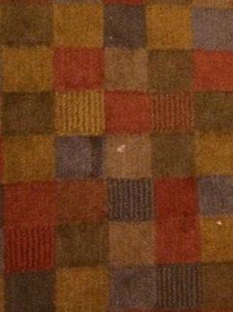 The Porches Inn at MASS MoCA : carpet stains