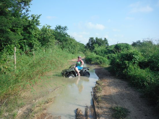 Mazatlan Tours: in one of the puddles Stuck