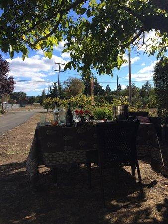 Casa Bella Inn: Al fresco lunch