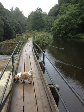 Etherow Country Park: over the water