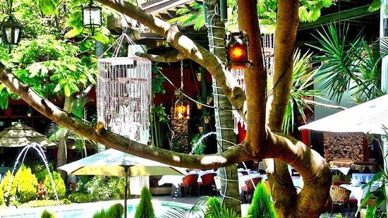 Sante Restaurante: Sante