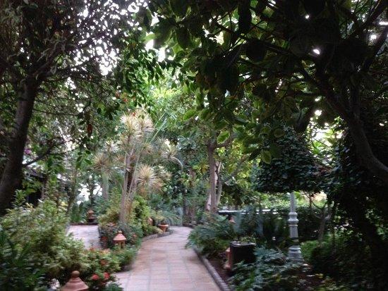 Hotel Parque Tropical : So sieht es aus auf dem Hotelgelände