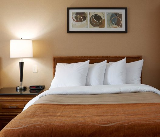 Comfort Inn: New rooms