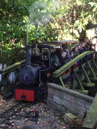 Brookside Garden Centre & Miniature Railway