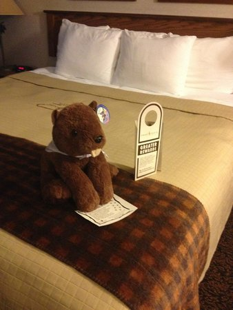 Stoney Creek Hotel and Conference Center - Des Moines: on bed in room