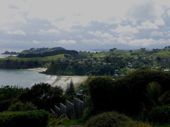 Around Waiheke Tours : Waiheke...breathtaking views