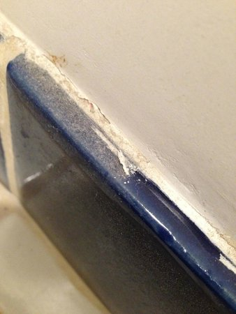 Gedney Farm: I wiped off half of a bathroom tile to see just how dirty it really was