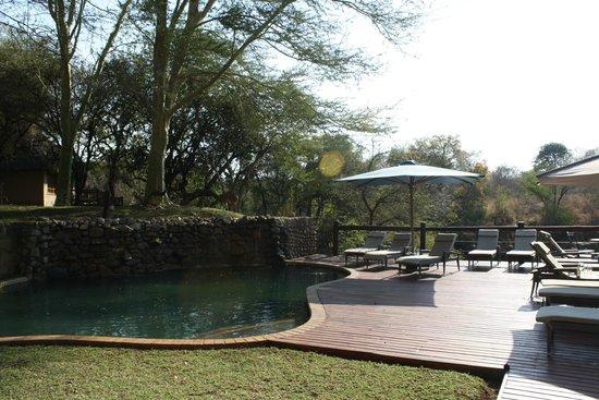Thornybush Waterside Lodge: piscine