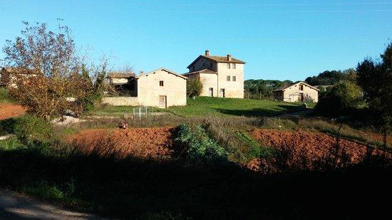 L\'agriturismo - Picture of Soggiorno Taverna Celsa, Sovicille ...