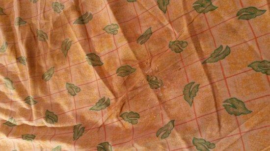 Hostellerie la Sapiniere: Les draps sont sales...
