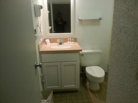 Quality Inn Gallipolis: Bathroom is small but impeccably clean!