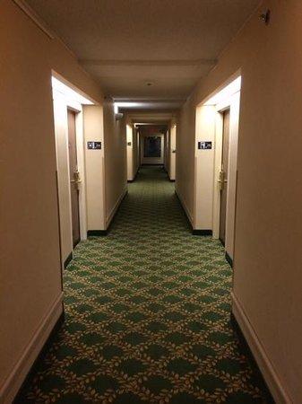 Hampton Inn Columbus-North: Second floor hallway