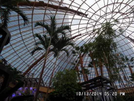 Harrah's Atlantic City Casino: Dome inside indoor pool