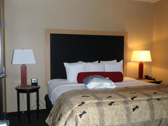 Cambria Hotel & Suites: comfy bed