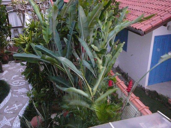 Pousada Mara E Claude: vista jardín