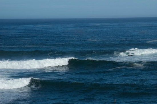Sweetwater Inn and Spa: Favorite Mendocino pastime: watching the waves roll in