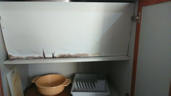 Green Mar Apartments: Shelf under sink pulled up and nailed in position, what's behind it, what's being hidden?
