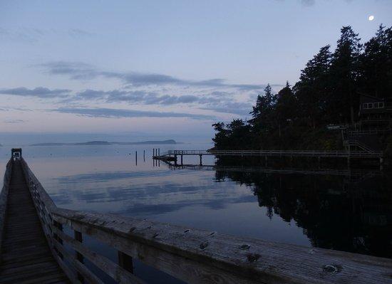 Blackberry Beach Cabins照片