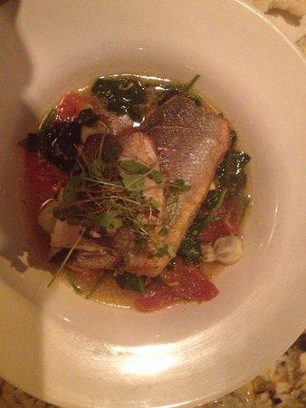 Bronzino (fish)