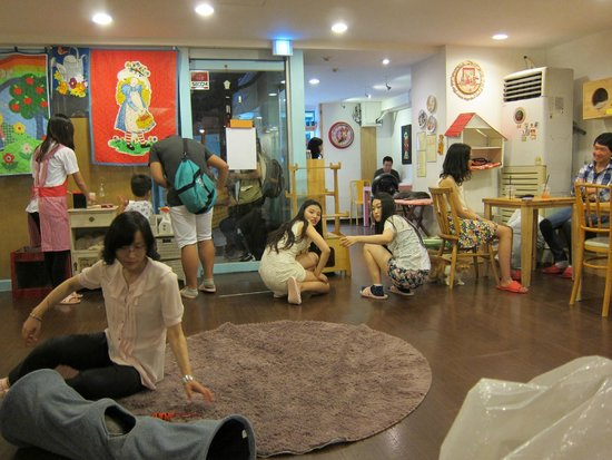 Cat Cafe Goyangi Noriteo