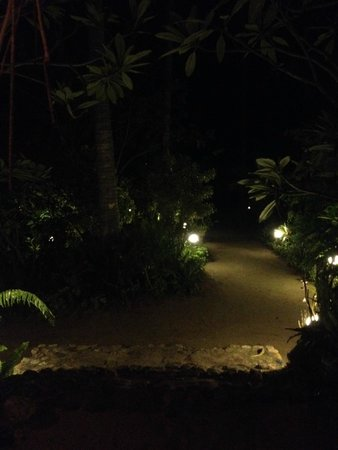 Seaflower Bungalows : Well lit at night