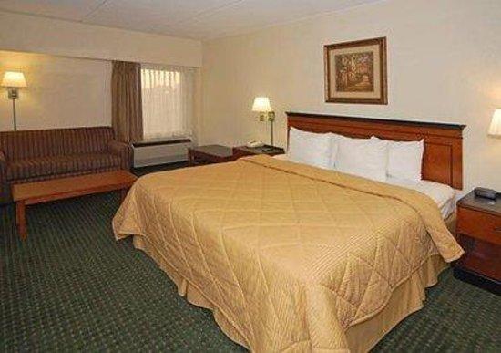 Comfort Inn Conyers: King Room