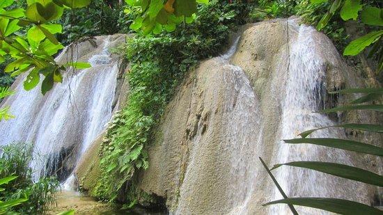 The Ruins at the Falls: The Falls