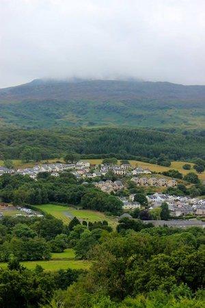 Dwy Olwyn Bed & Breakfast : View from garden