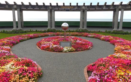 North Island, New Zealand: Sound Shell flowerbeds at Hawkes Bay
