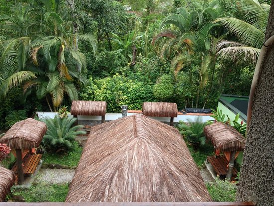 Pousada D'Pillel: Garden/Breakfast Area with Jungle View
