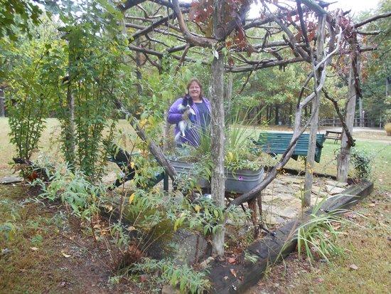 Rim Rock's Dogwood Cabins: Sitting area near Bear's Den