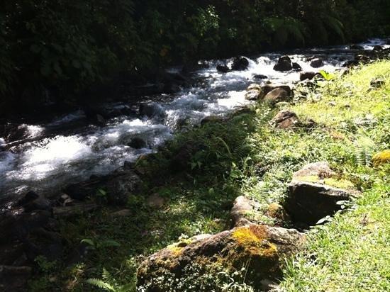 El Silencio Lodge & Spa: maravillosa vista y sonido relajante!!