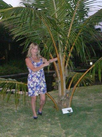 Coconuts Beach Club : Max 2nd birthday