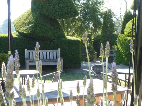 Hedgend Maze: Relax in our beautiful gardens