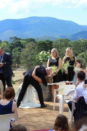 Hedgend Maze: Weddings at Hedgend