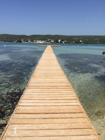 Gilligan's Island : Great snorkeling