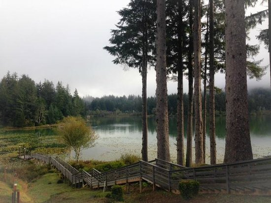 Siltcoos Lake: morning view