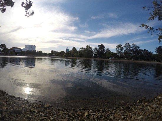 Evandale Park