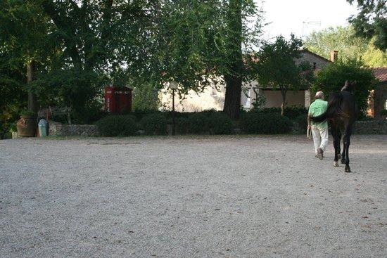 La Selva Agriturismo : The Horseman