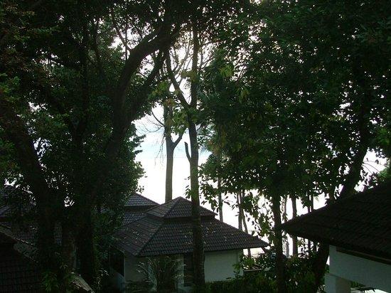 Chang Buri Resort and Spa: вид из окна номера