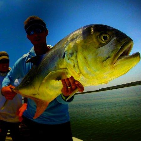 Off the hook fishing charters hilton head sc top tips for Off the hook fishing charters