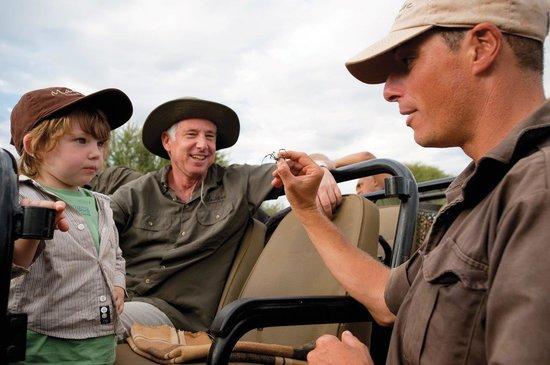 Madikwe Game Reserve, جنوب أفريقيا: Madikwe Cubz