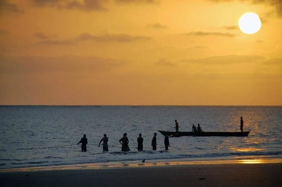 Che Shale: Fishermen bringing in the catch at dawn