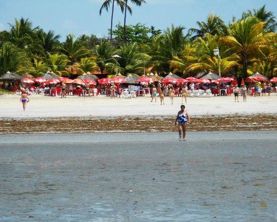 Piscinas Naturais Paripueira - Alagoas : locais para refeições muito bom